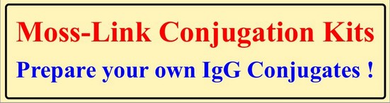 Moss-Link Conjugation Kits  -  Prepare your own IgG Conjugates!